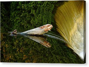 Canvas Print featuring the photograph Falling Tree Reflections by Debbie Oppermann