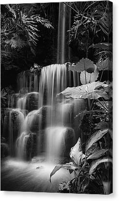 Falling Waters Canvas Print by Diana Boyd