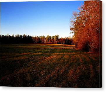 Canvas Print featuring the photograph Fallow Field by Greg Simmons