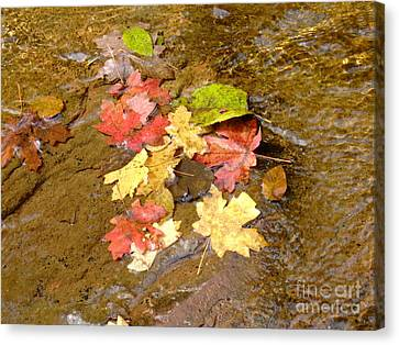 Falls Colors 6349 Canvas Print