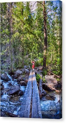 Falls Creek Footbridge Canvas Print by Omaste Witkowski