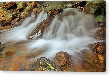 Falls Creek Mount Rainier National Park Canvas Print by Bob Noble Photography