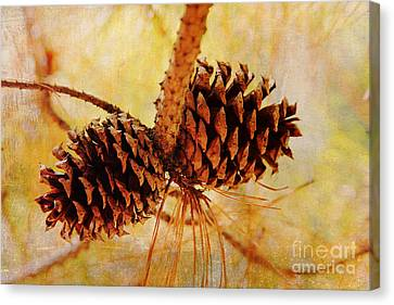 Canvas Print featuring the photograph Fall's Golden Light by Trina  Ansel