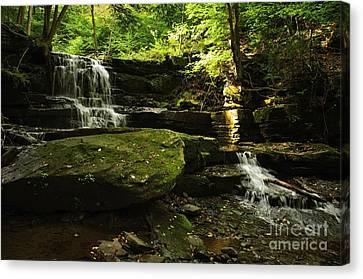 Canvas Print featuring the photograph Fallsbrook Falls by Debra Fedchin