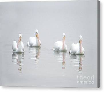 Canvas Print featuring the photograph Family Portrait by Mariarosa Rockefeller