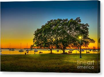 Family Sunset Canvas Print by Marvin Spates