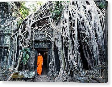 Famous Big Tree Inside Ta Phrom Temple - Angkor - Cambodia Canvas Print by Matteo Colombo