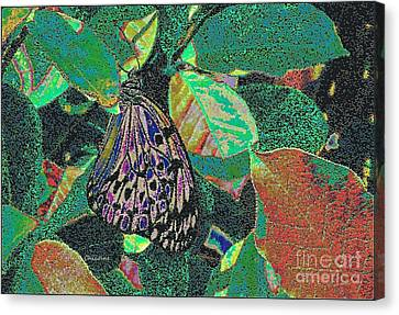 Canvas Print featuring the photograph Fanciful by Kathie Chicoine