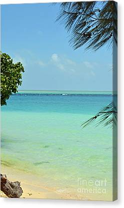 Fanning Island Water Canvas Print
