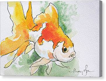 Fantail Goldfish 2 Canvas Print by Tracie Thompson
