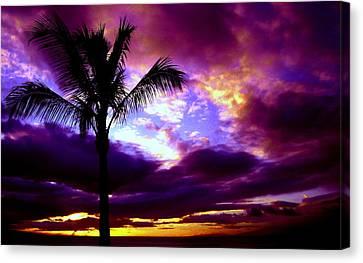 Fantastic Colors Canvas Print