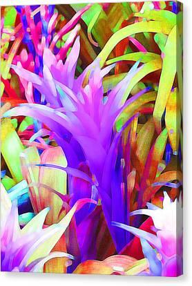 Fantasy Bromeliad Abstract Canvas Print by Margaret Saheed
