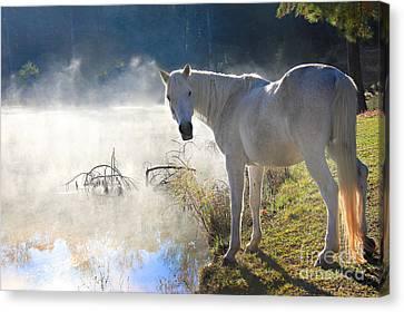 Fantasy Fog Canvas Print by Leslie Kirk