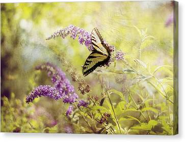Fantasy Garden Series II Canvas Print by Kathy Jennings