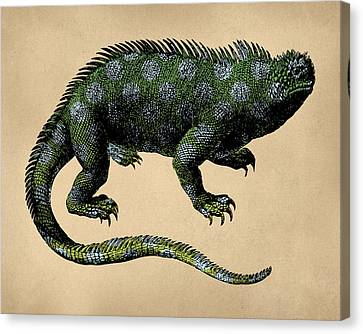 Fantasy Iguana Vintage Illustration Canvas Print by Flo Karp