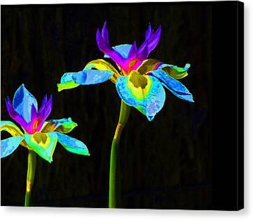 Fantasy Irises 2 Canvas Print by Margaret Saheed