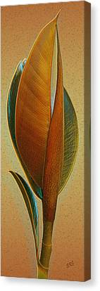 Fantasy Leaf Canvas Print by Ben and Raisa Gertsberg