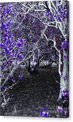 Fantasywood Canvas Print