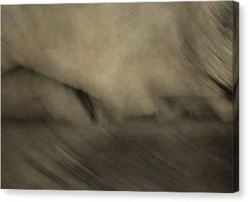 Farm Abstract Canvas Print