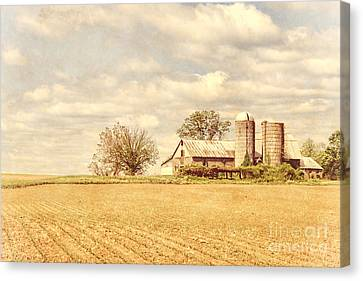 Farm And Fields  Canvas Print by Olivier Le Queinec