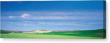 Farm Audausia Cordoba Vicinity Spain Canvas Print by Panoramic Images