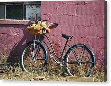 Farm Bicycle Canvas Print by Mary Zeman