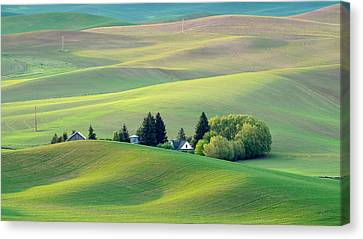 Farm Buildings Nestled In The Palouse Country Canvas Print