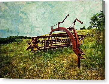 Rake Canvas Print - Farm Equipment In A Field by Amy Cicconi