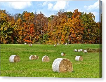 Farm Fresh Hay Canvas Print