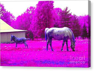 Canvas Print featuring the photograph Farm Friends - Animals by Susan Carella