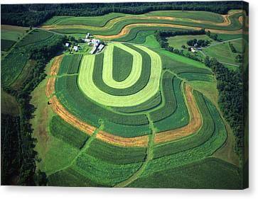 Farm Greens And Hillside Contour Plowing Canvas Print by Blair Seitz
