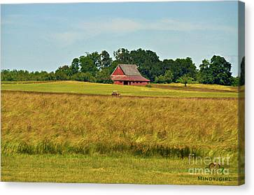 Canvas Print featuring the photograph Farm In Oregon by Mindy Bench