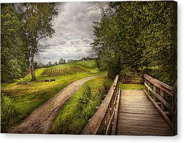 Field Of Crops Canvas Print - Farm - Landscape - Jersey Crops by Mike Savad
