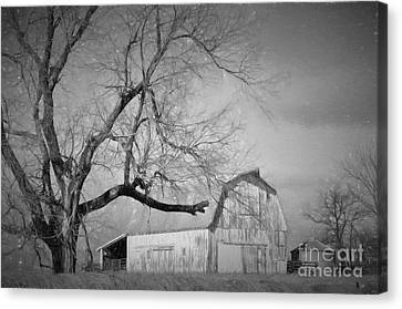 Farm Life  Canvas Print by Liane Wright