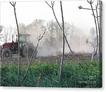 Canvas Print featuring the photograph Farm Life  by Michael Krek