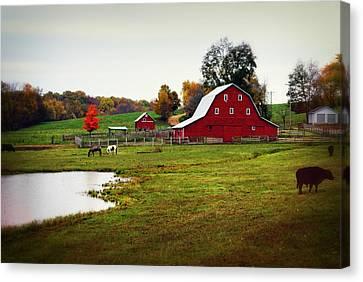 Farm Perfect Canvas Print by Marty Koch