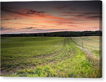 Farm Road Dawn Canvas Print