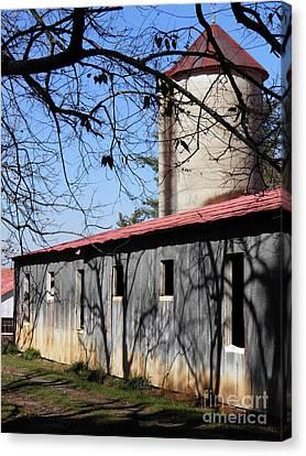 Farm Shadows Canvas Print by Amy Stuart Langlo