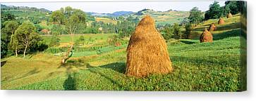 Bales Canvas Print - Farm, Transylvania, Romania by Panoramic Images
