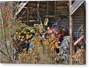 Farmall Find Canvas Print by Benanne Stiens