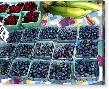 Farmers Berries Canvas Print by Elaine Plesser