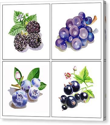 Farmers Market Gifts Black And Blue Vitamins Canvas Print by Irina Sztukowski