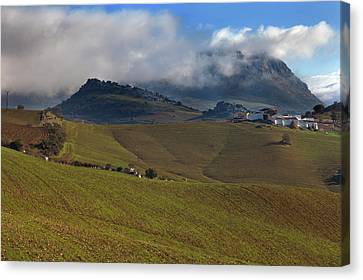 Farmhouse Across Newly Planted Canvas Print by Panoramic Images