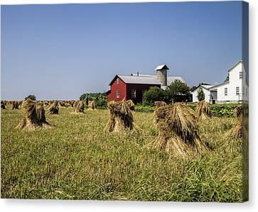 Farming Amish Style Canvas Print by Kathy Clark