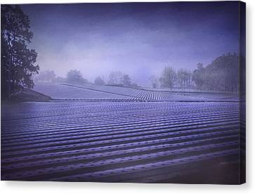 Farmland 2 Canvas Print