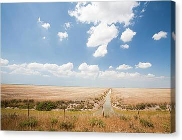 Drain Canvas Print - Farmland In The Coto Donana by Ashley Cooper