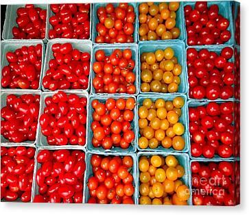 Farmstand Tomatos Canvas Print