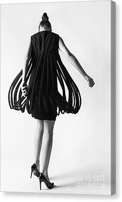 Pierre Cardin Car Wash Dress Canvas Print