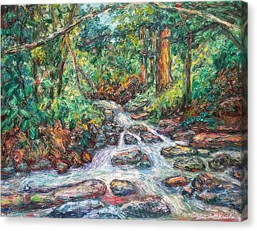 Fast Water Wildwood Park Canvas Print by Kendall Kessler