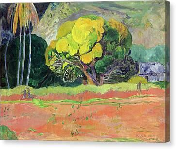 Fatata Te Moua Canvas Print